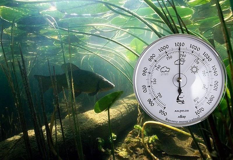 Лучшее атмосферное давление для рыбалки