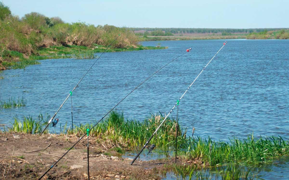 ✅ первомайка набережные челны рыбалка - danafish.ru