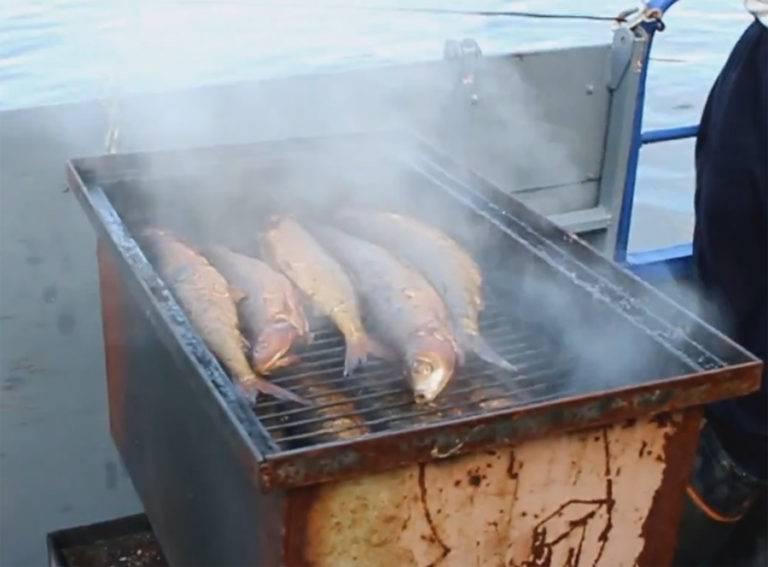 Ловись рыбка большая и маленькая: что такое байкальский омуль и с чем его едят  - irkutskmedia