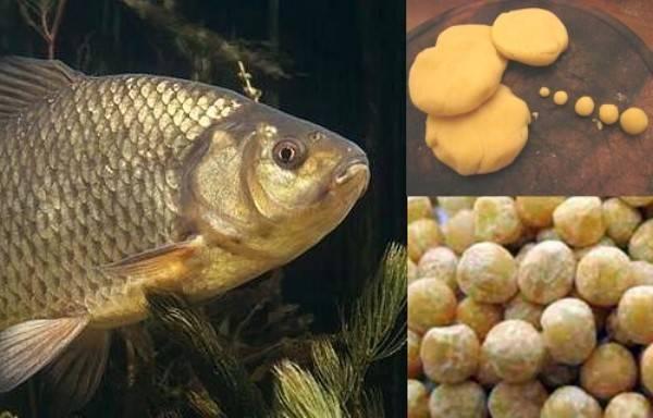 Манка для рыбалки – основные рецепты