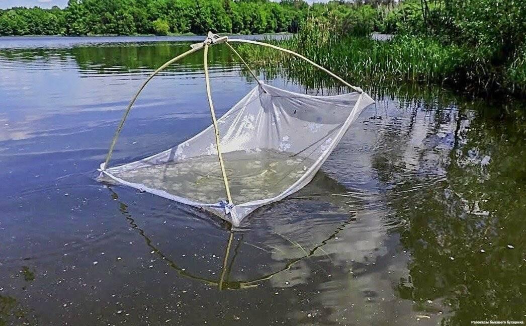 Можно ли ловить рыбу мережей, мордой, вентерем, вершей, пауком или подъемником? | поиск практика решение