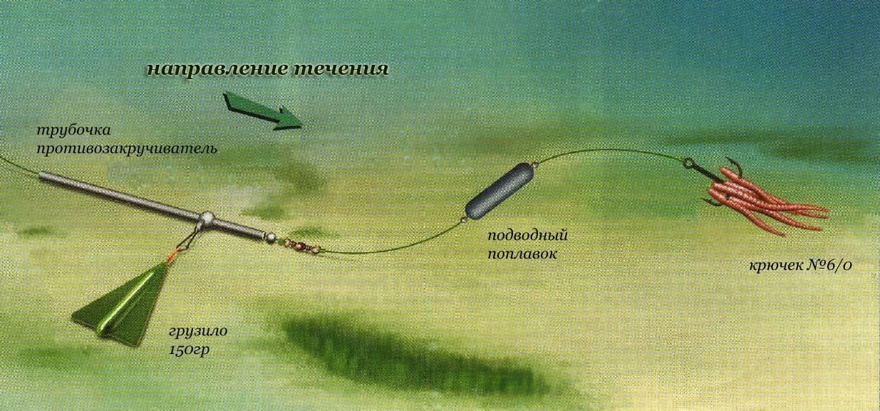 Снасти для ловли сома с берега и с лодки - как сделать монтаж донной снасти