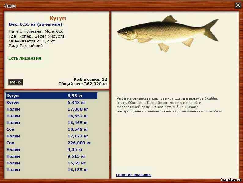 Претендент на место в красной книге рф – рыба муксун