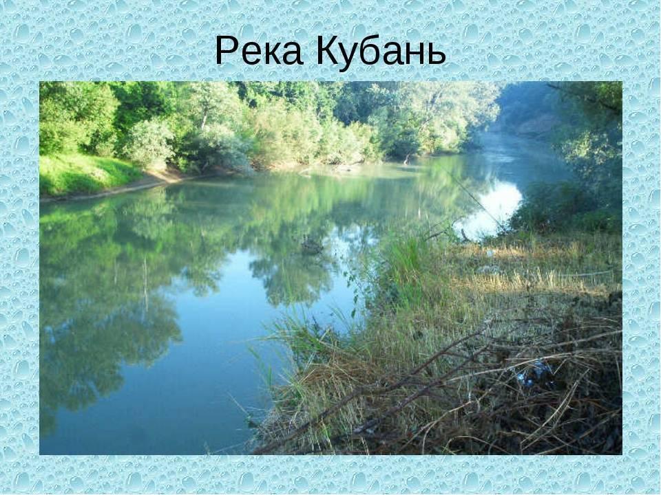 Описание реки кубань на карте, характеристики, растения и животные, рыбалка и отдых