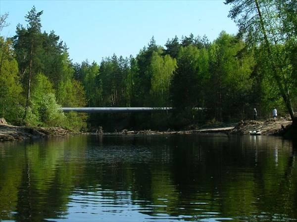 Река гусь, владимирская область: краткое описание, природный мир и интересные факты