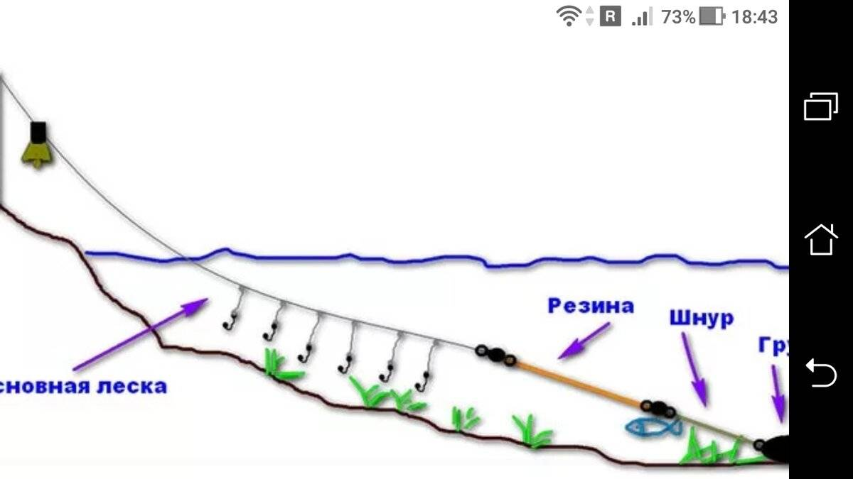 Донка резинка видео - рыбалка