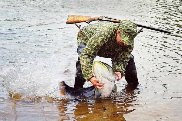 Нерестовый запрет 2020. московская область. новый закон о рыбалке