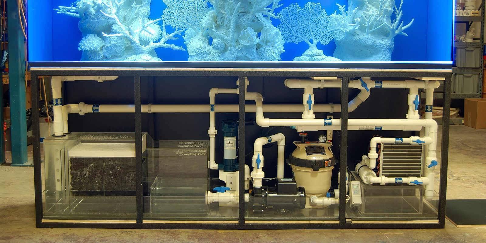 Кислотность воды в аквариуме, или показатель pH