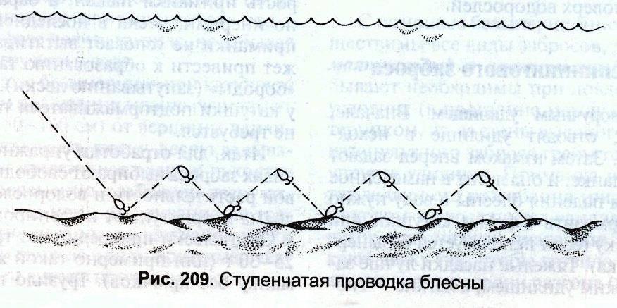 Рыбалка на воблер: техника, выбор приманки, проводки