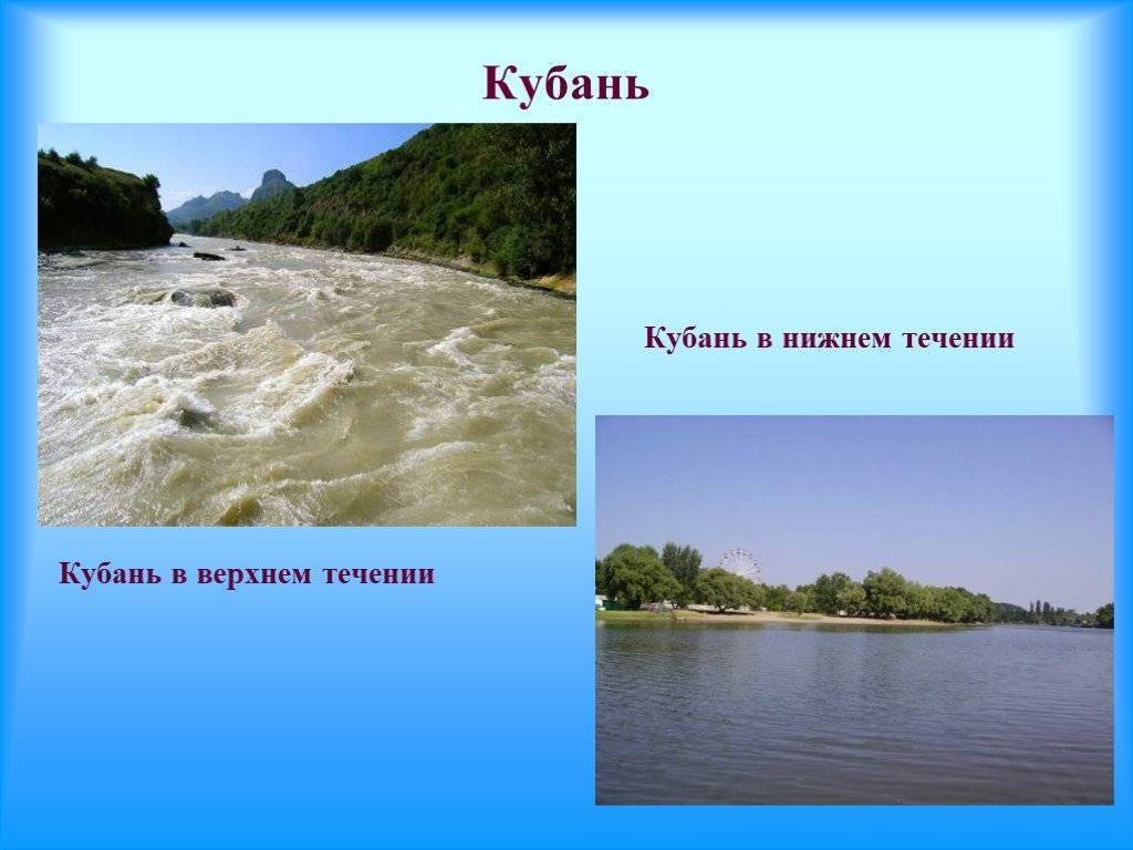 Кубань (река) — википедия. что такое кубань (река)