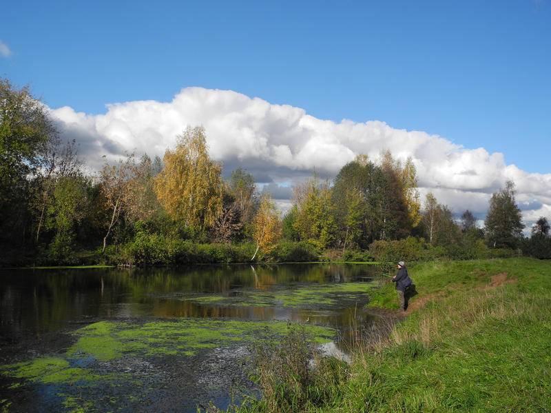 Рыбалка в машково люберецкого района: особенности ловли, какая рыба водится