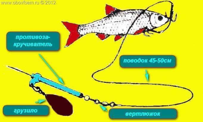 Ловля судака в отвес с лодки: снасть и ее монтаж
