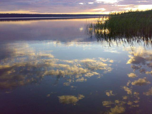 Экологический обзор воздействия при развитии водных туристских маршрутов (стр. 3 )