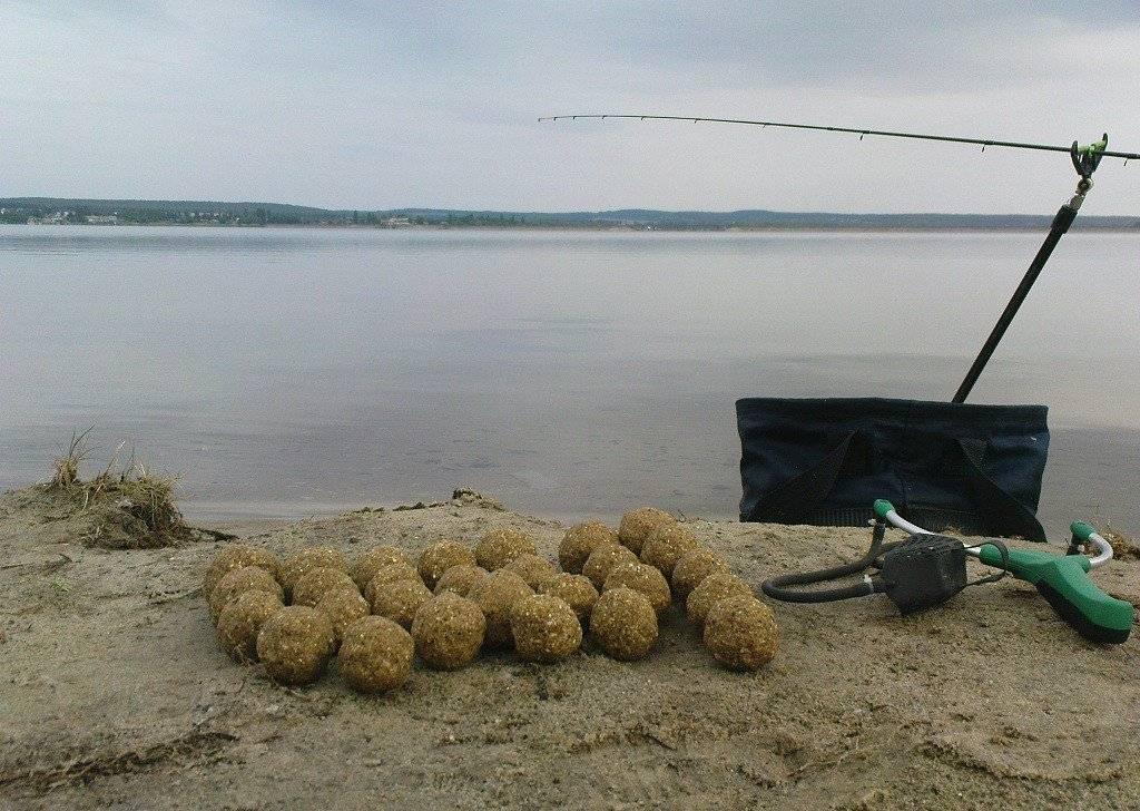 Ловля карпа в сентябре: где ловить карпа в сентябре, какие наживки и снасти использовать