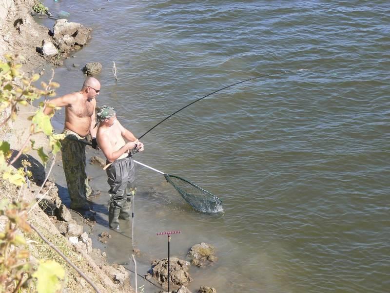 Рыбалка на ахтубе и нижней волге осенью | осенняя рыбалка в астрахани: в сентябре, октябре и ноябре | погода и рыболовный календарь: какая рыба ловится