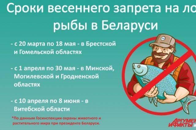 Запрет на рыбалку 2020, сроки и штрафы