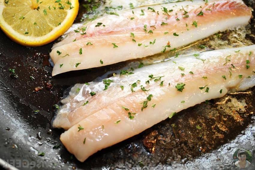 Польза и вред сайды: среда обитания, варианты приготовления, состав и калорийность рыбы (105 фото + видео)