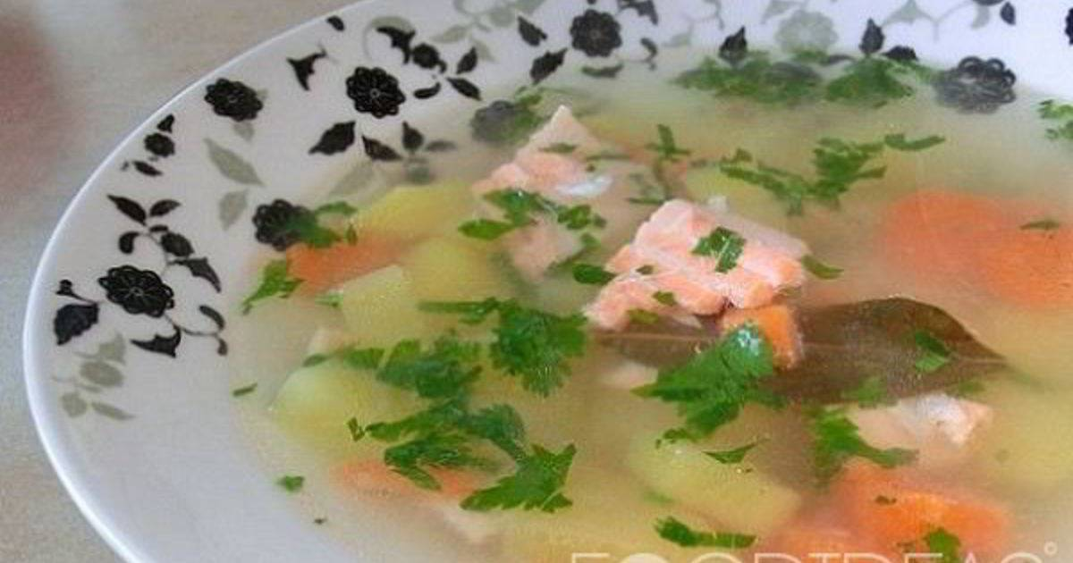 Уха из лосося: рецепт