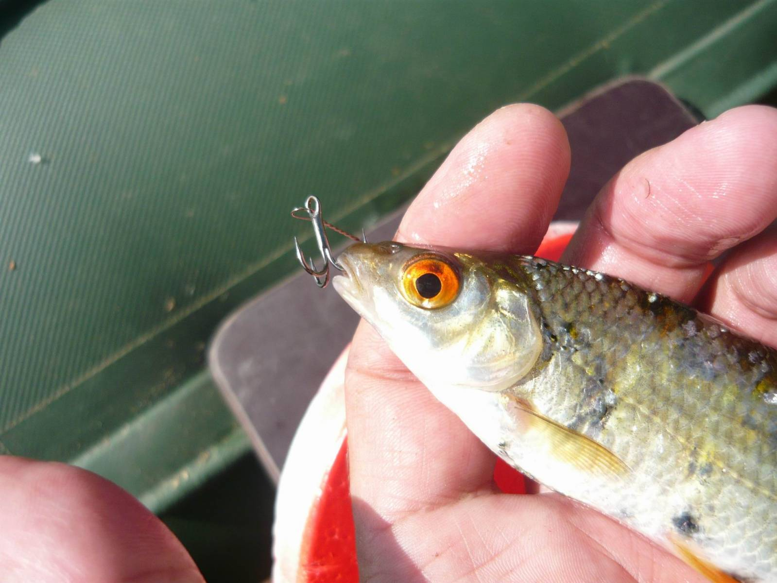 Живец: способы ловли — Самоделки для рыбалки своими руками