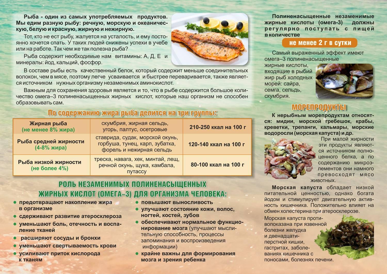 Ценный морепродукт — навага, расскажем о ее полезных свойствах и вкусовых качествах