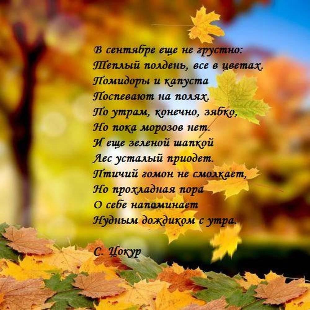 Короткие стихи осень для детей 3-4 лет | красивые стихи об осени в сад, развитие ребенка