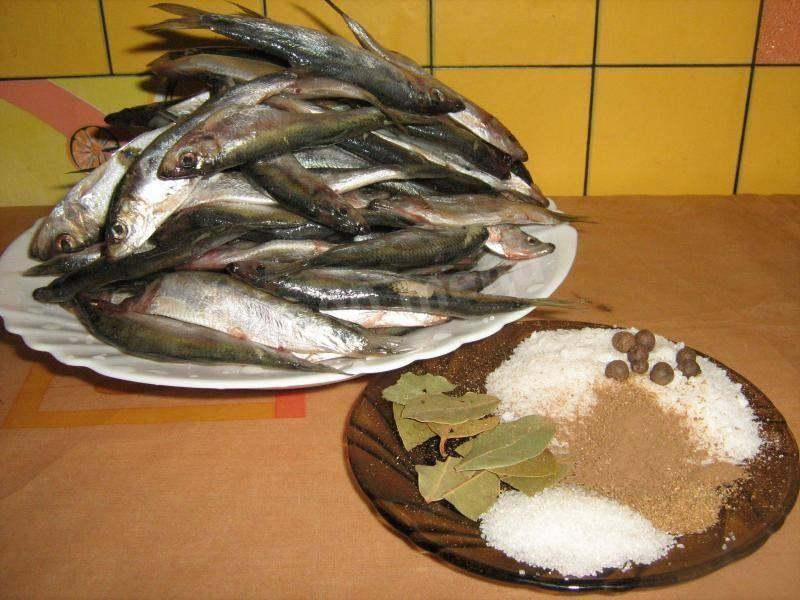 Салат с килькой пряного посола - рецепт с фотографиями - patee. рецепты