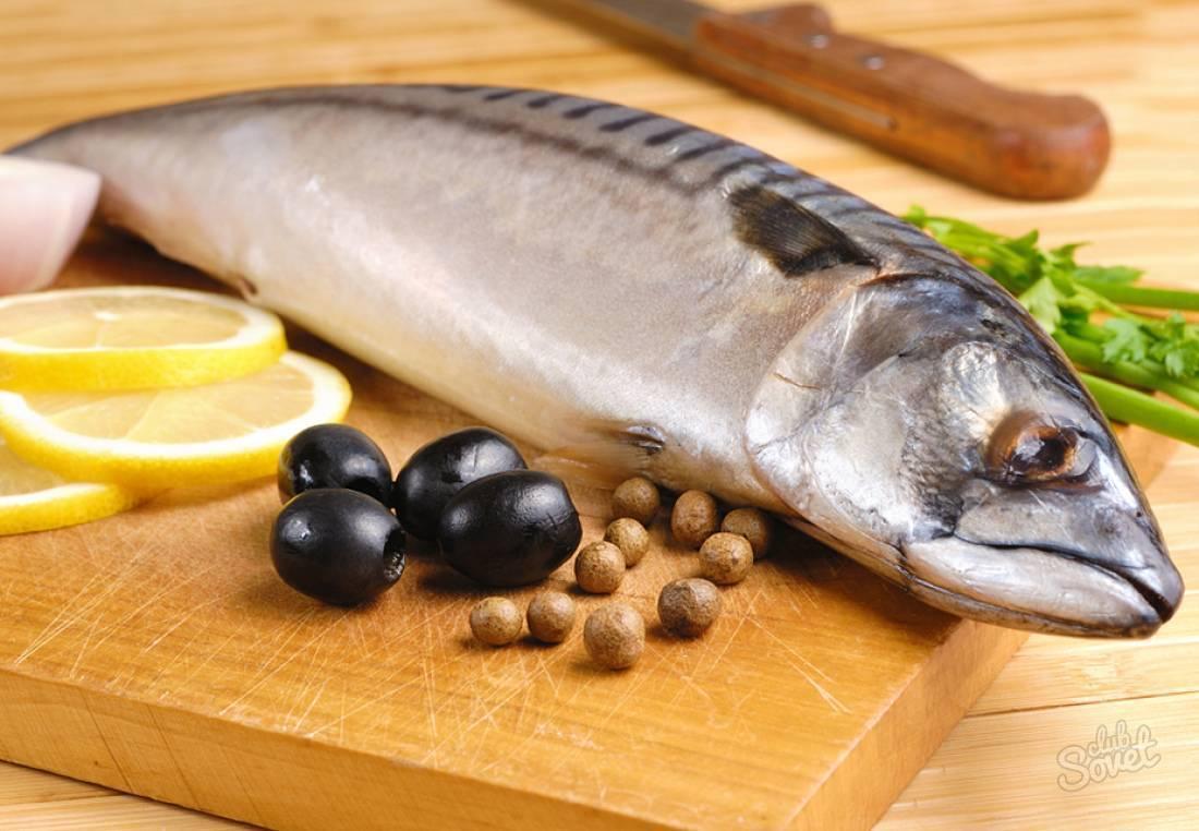 Особенности рыбы наваги, ее польза и вред