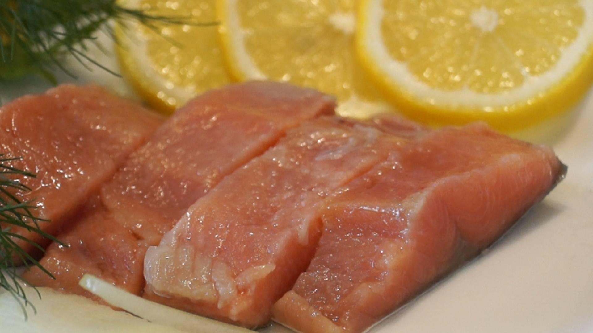 Как засолить горбушу — вкусные и быстрые рецепты посола в домашних условиях