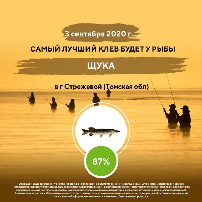 Видеокарта уловистых мест россии сезон 7-й