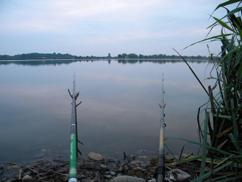Майкоп - календарь рыболова. рыбалка в майкопе, график клёва рыбы.