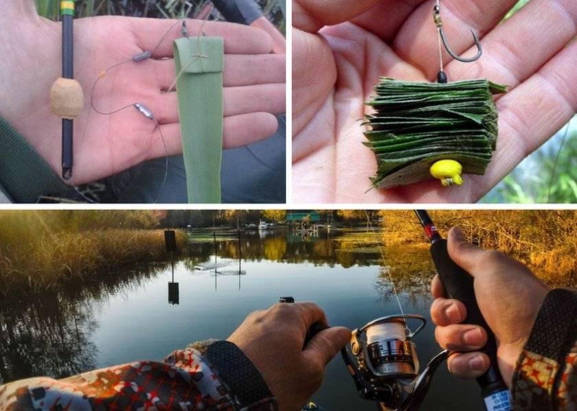 Лучшие наживки и приманки для ловли язя - какими снастями, на что и как ловить зимой, весной, летом и осенью, видео