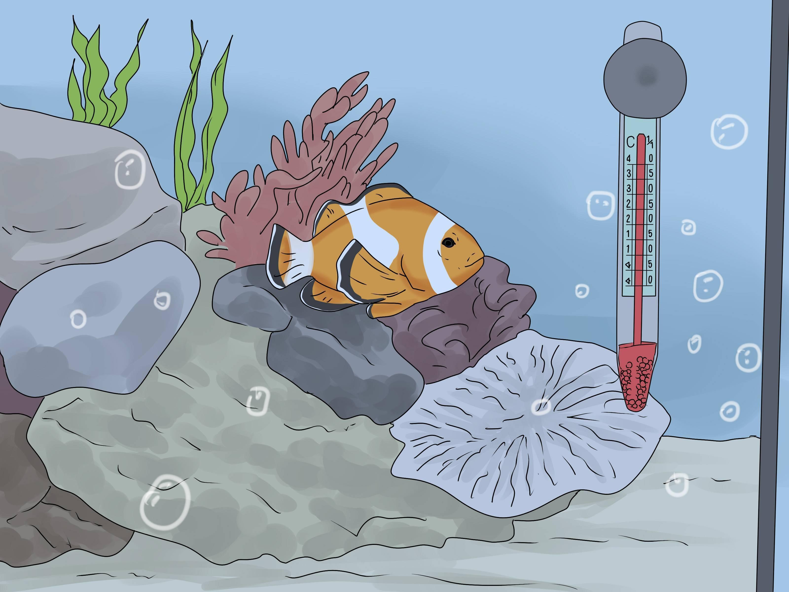 Почему аквариумные рыбки лежат на дне?