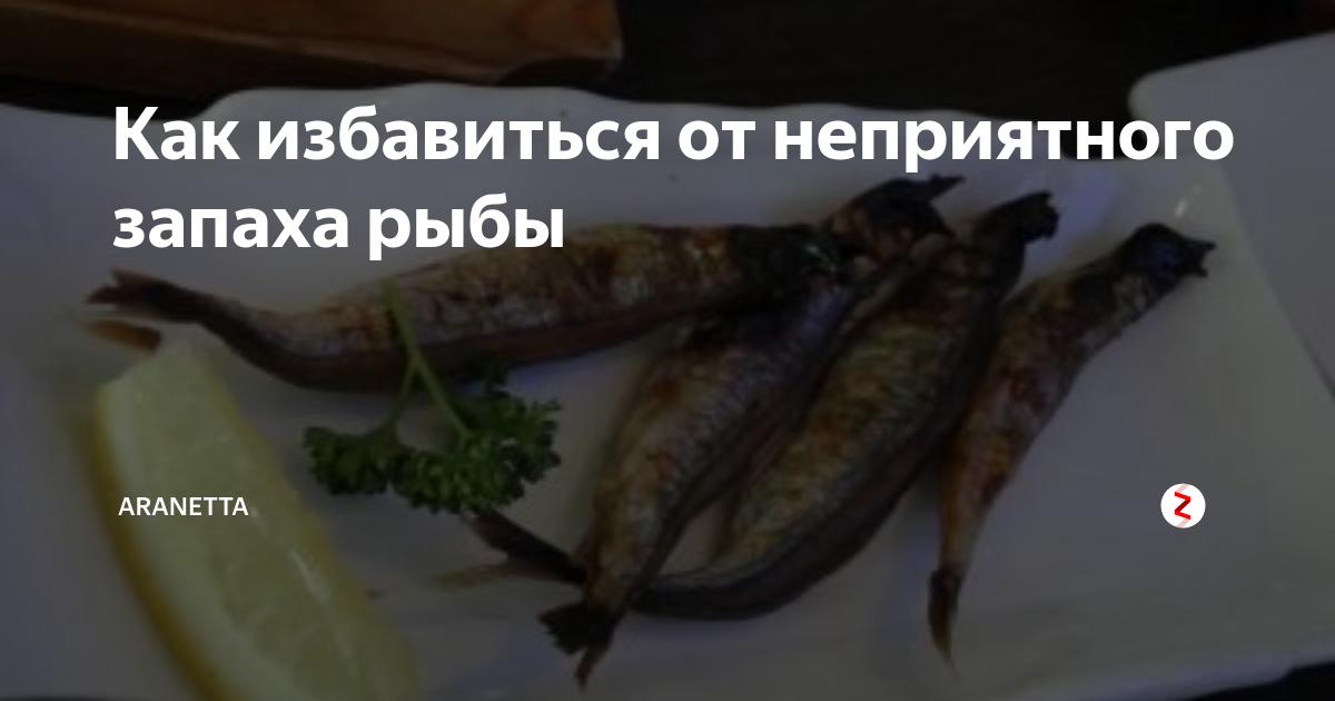 Как избавиться от запаха рыбы на руках, одежде, в квартире