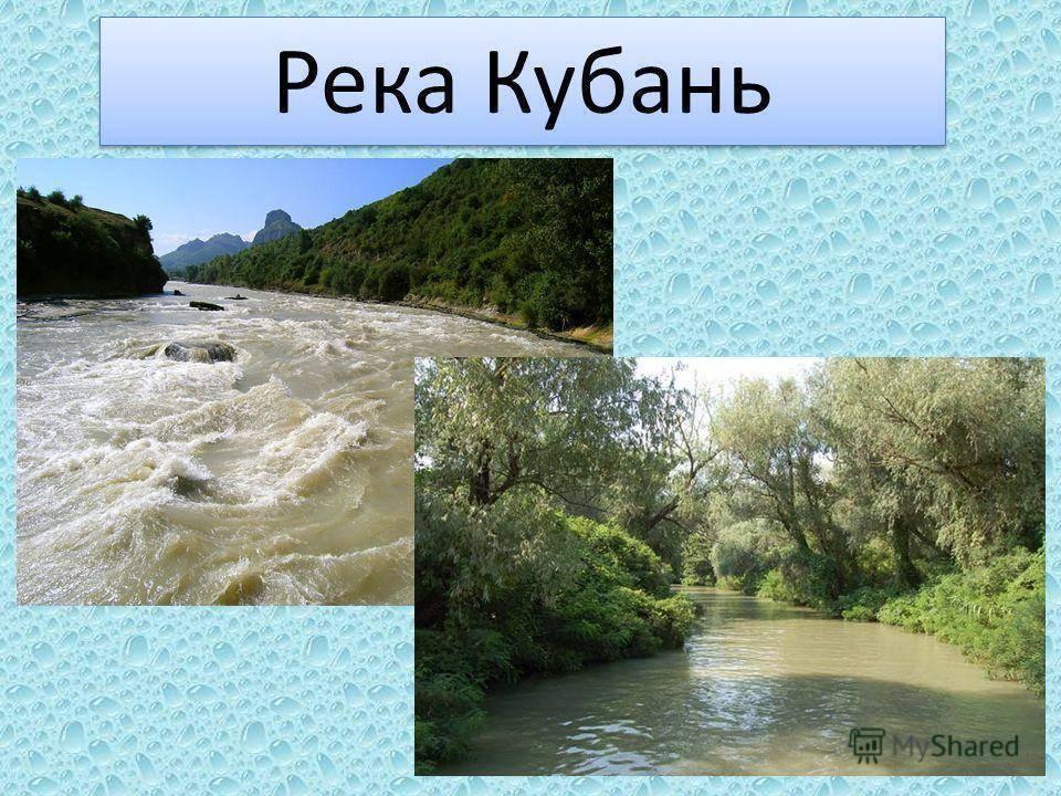 Доклад-сообщение река кубань 2, 3, 4, 8 класс