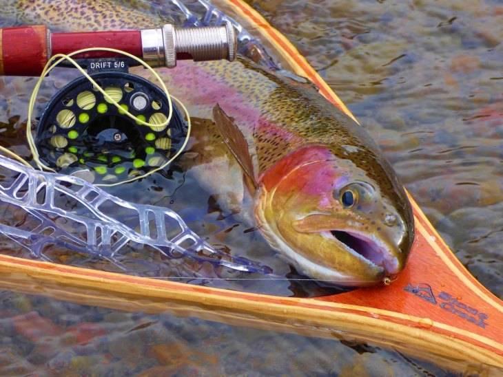 Ловля лосося нахлыстом и спиннингом - всё о рыбалке