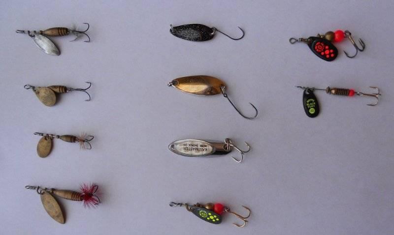 Ловля ленка по сезонам: основные способы, снасти и приманки, отзывы рыбаков