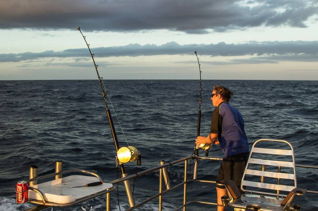 Великолепная шамандра, или рыбалка в водах босфора