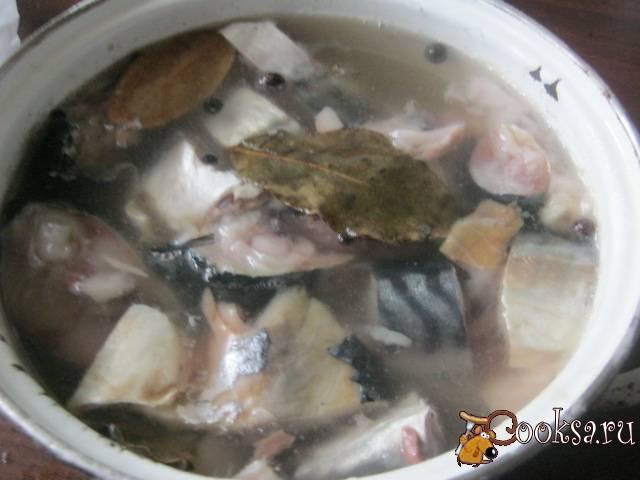 Как посолить скумбрию вкусно без рассола
