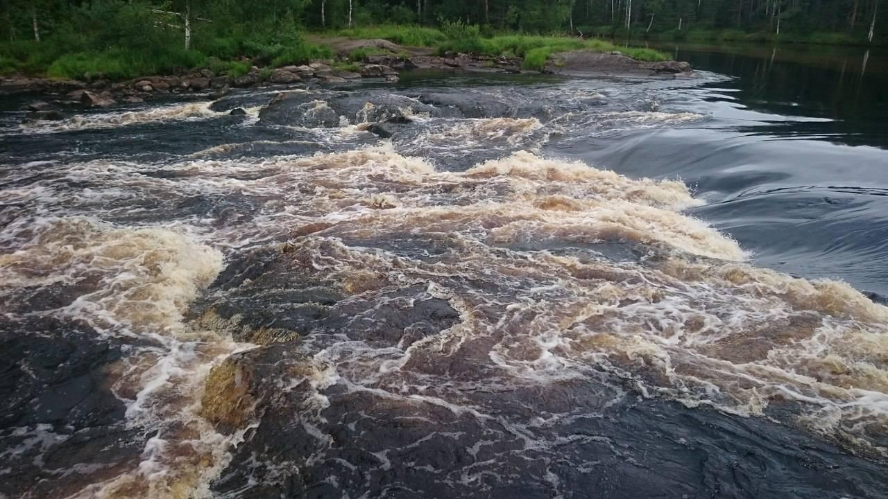 Шуя (река, впадает в логмозеро)