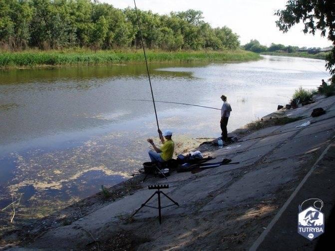 Озера курганской области для рыбалки – суперулов – интернет-портал о рыбалке