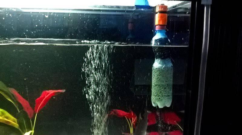 Вода для аквариума из под крана в домашних условиях: как приготовить, можно ли заливать,  плюсы и минусы использования, как правильно использовать