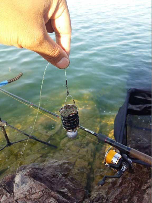 Ловля краснопёрки в мае - читайте на сatcher.fish