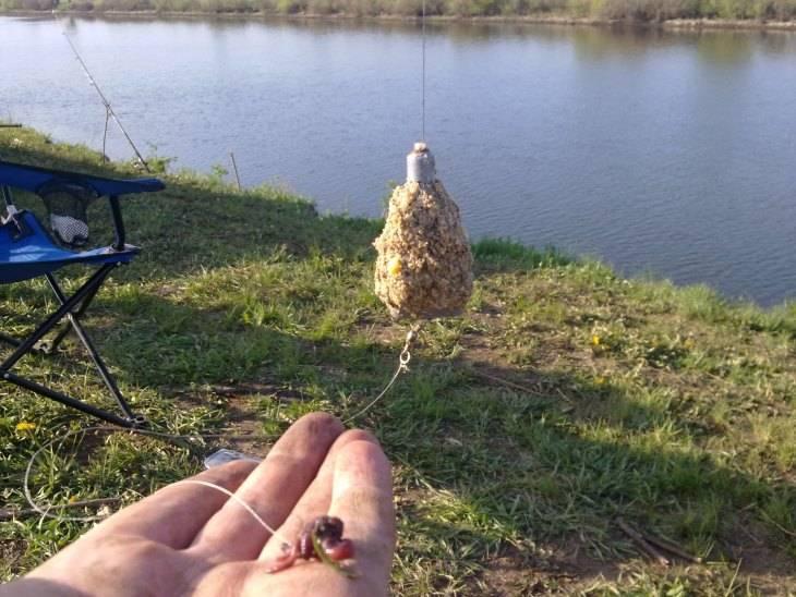 Гороховая мастырка для рыбалки – рецепты приготовления