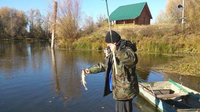 Рыбалка в саратове: топ мест для ловли трофея