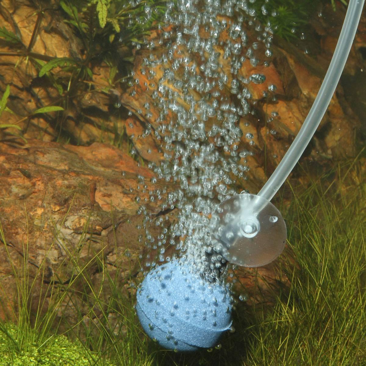 Аэрация воды в аквариуме. необходимость или излишество.
