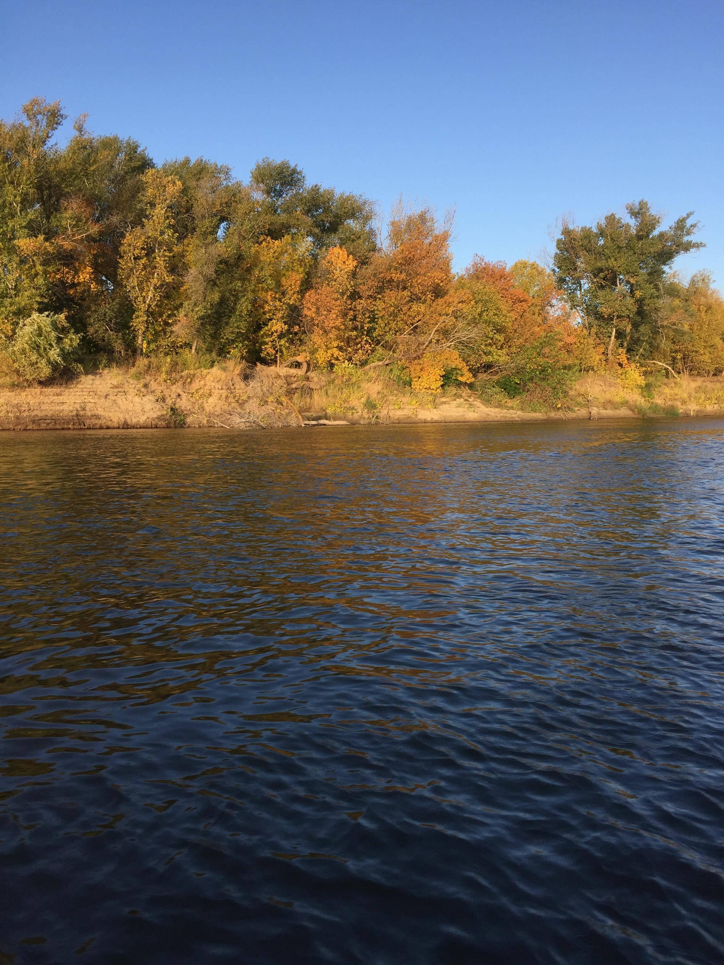 Рыбалка на иртыше: особенности ловли рыбы на реке, эффективная тактика