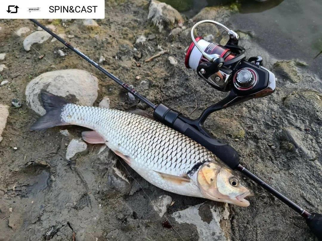 Рыбалка на ленка