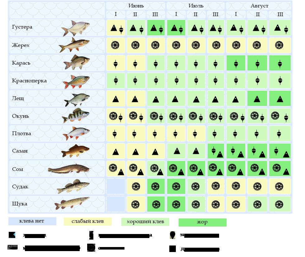 Рыбалка в рубцовске и его окрестностях: отзывы, прогноз клева