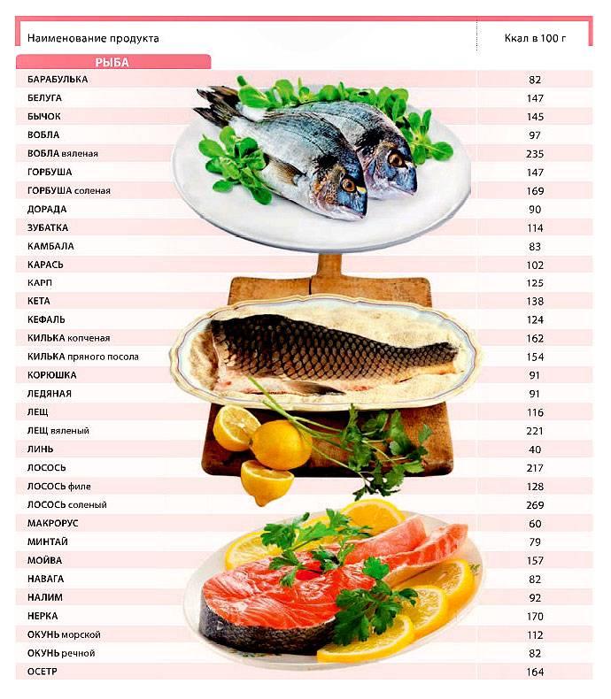 Кета что за рыба?, 19 полезных свойств, польза и вред для здоровья