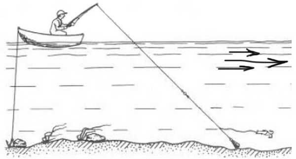 Ловля уклейки на поплавочную удочку: какую снасть выбрать?